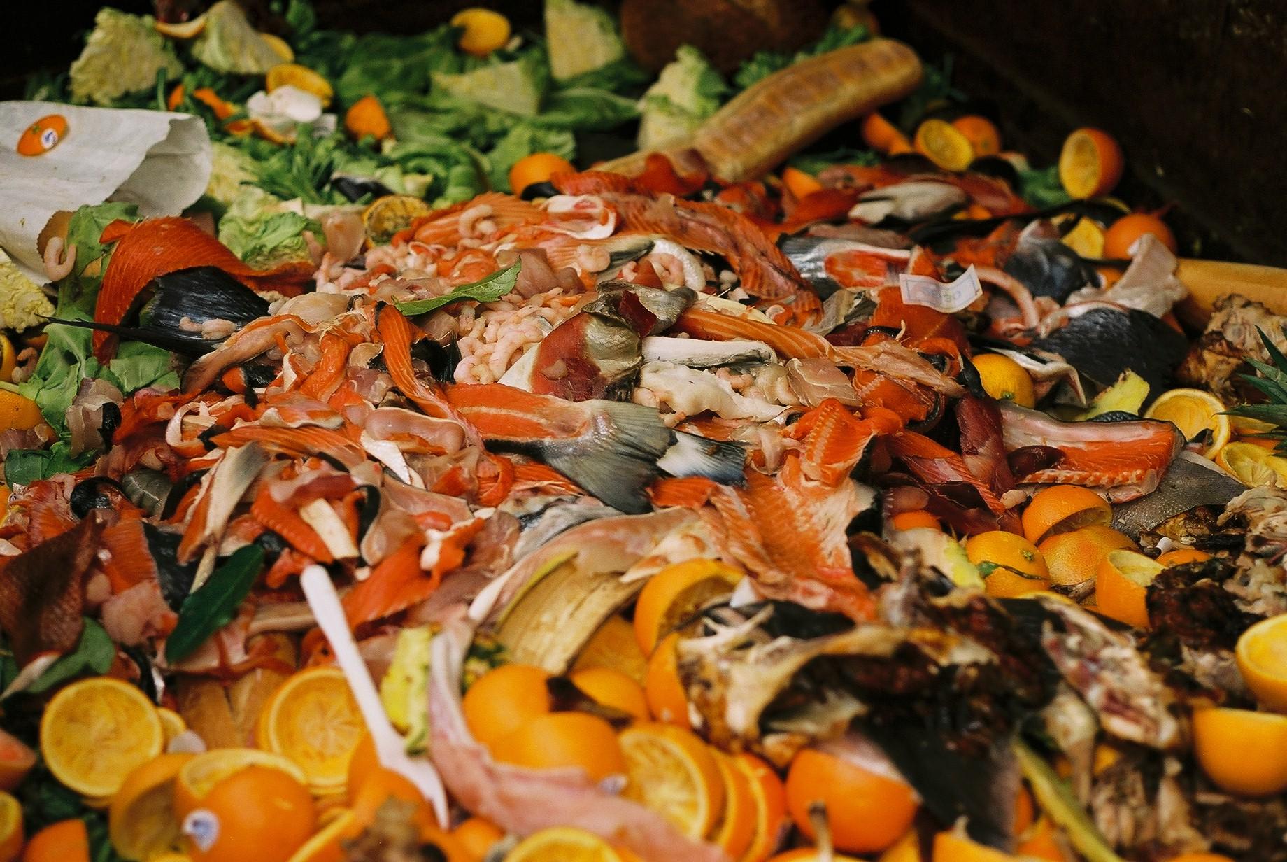 food waste - fsm