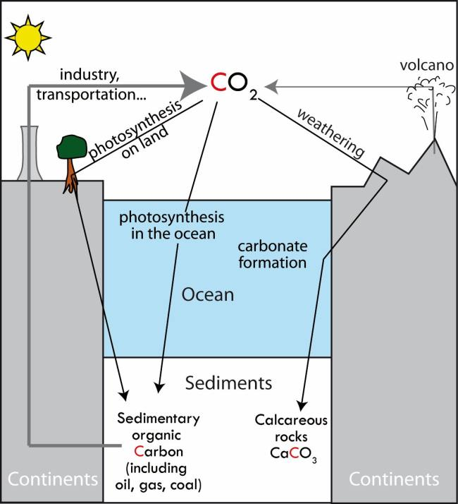 geological carbon cycle [ 1300 x 1429 Pixel ]