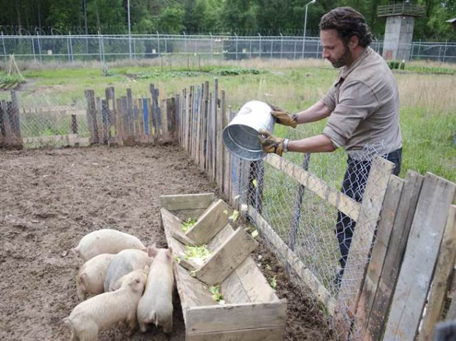 Remember when Rick just effing loved pigs on'The Walking Dead'?