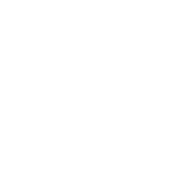 FSR ABS