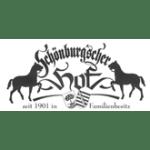Schönburgscher-Hof-sw