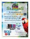 Sale flyer in poster size