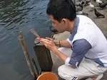 タイでタンブンを行い、来世の為に徳を積んでみました!