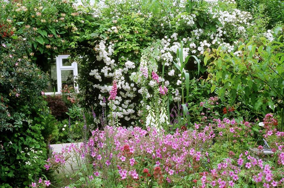 Cottagestyle Landscapes And Gardens  Diy Garden Projects
