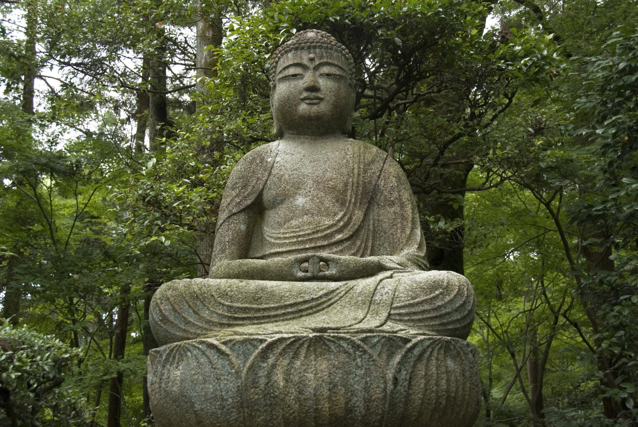 Buddhist Teachings On Reincarnation Or Rebirth