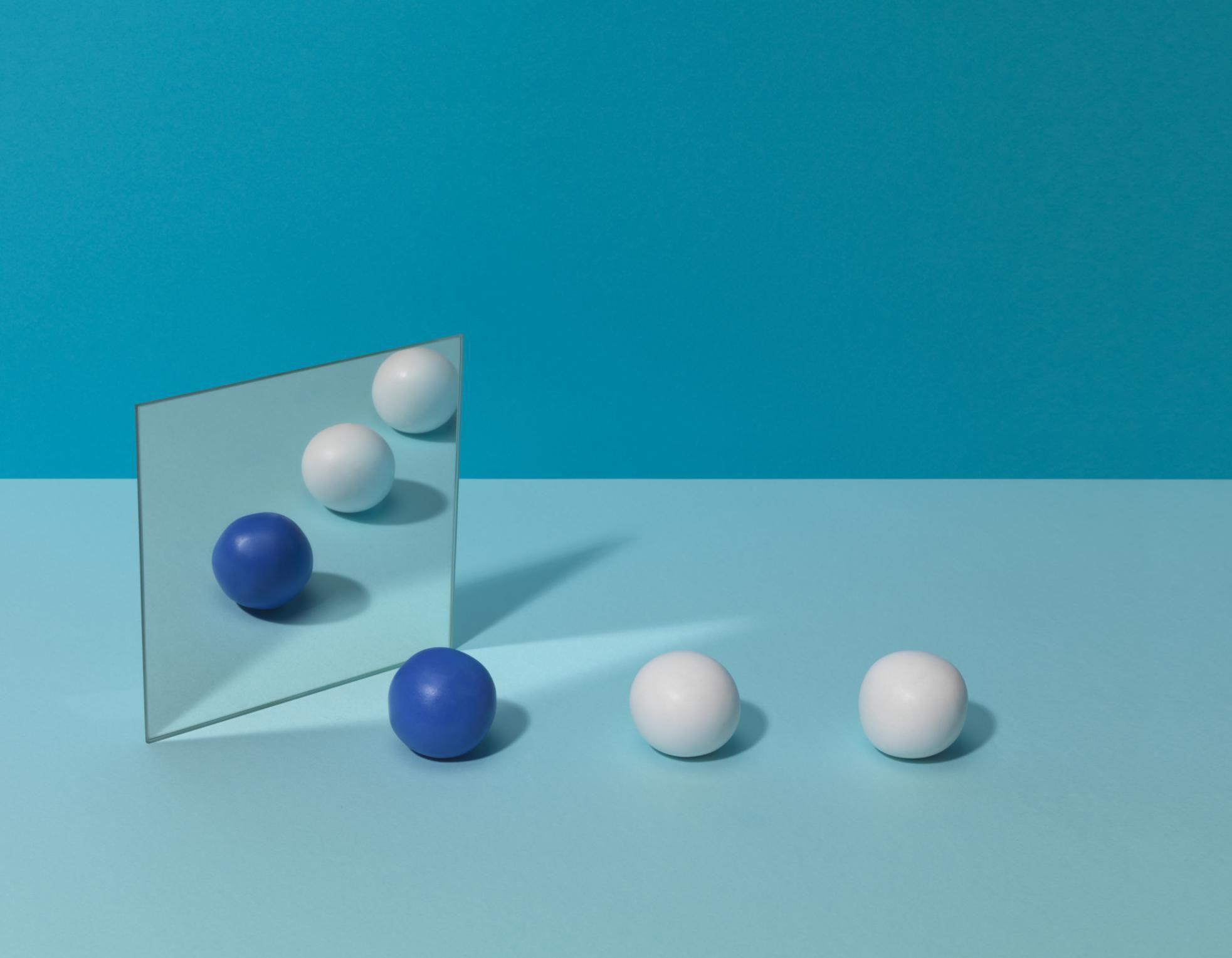 Worksheet Symmetry In Nature