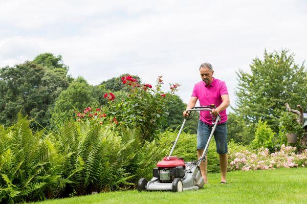 6 push lawn mowers
