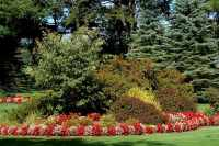 Flower Borders: Ideas to Make Your Landscaping Sizzle