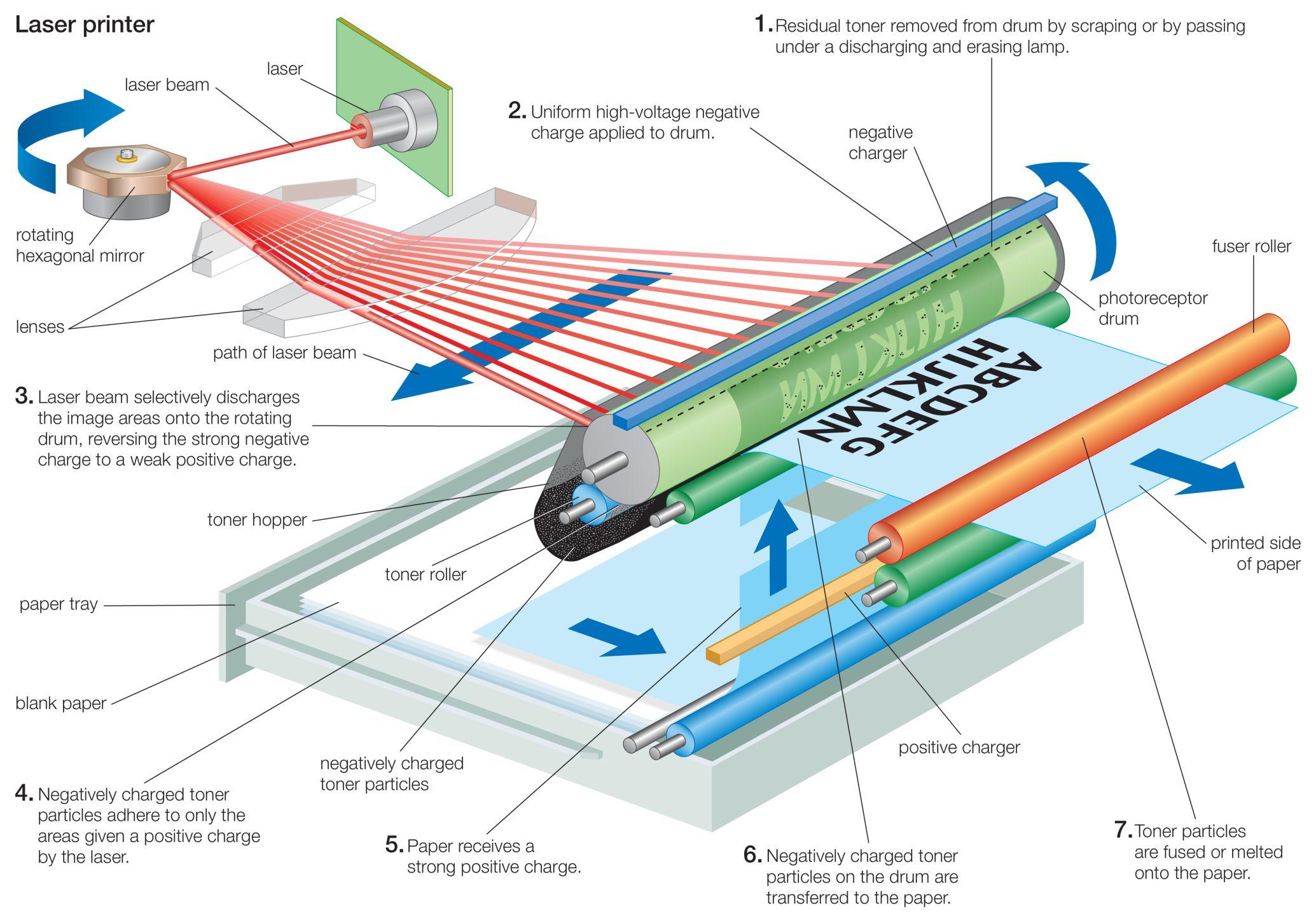 working of laser printer with diagram fender jaguar bass wiring ¿cómo funciona una impresora laser?