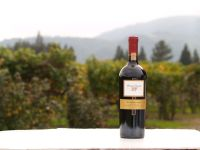 The 8 Best Napa Valley Wineries for Cabernet Sauvignon
