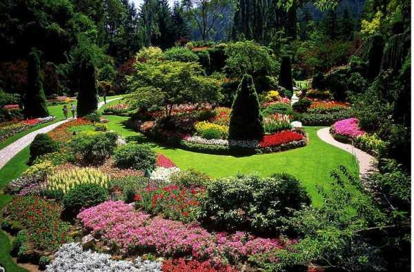 designing garden with landscape