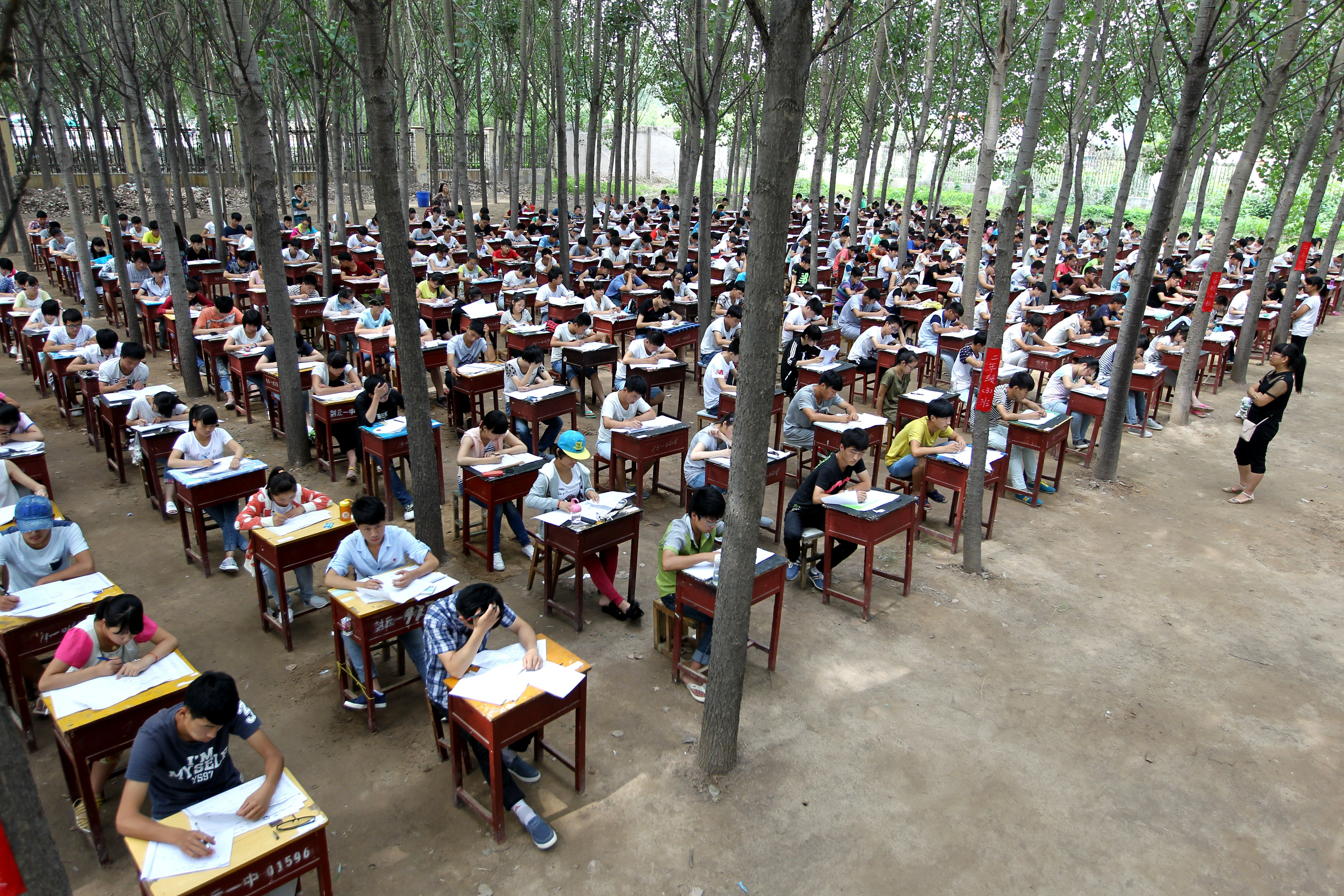 What Are School Programs Like In China