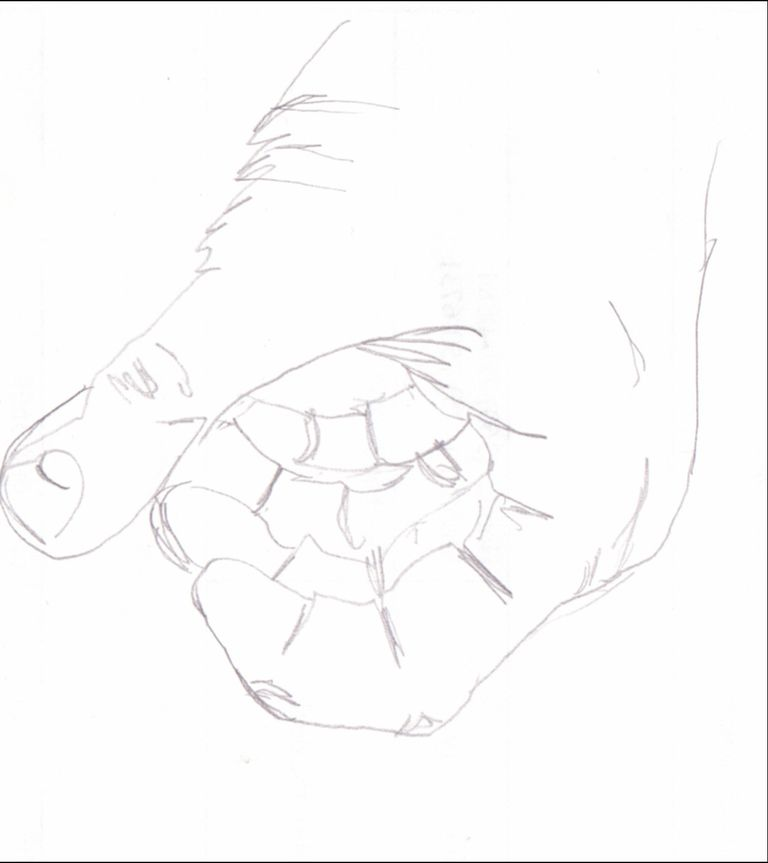 Blind Contour Drawing: A Classic Drawing Exercise