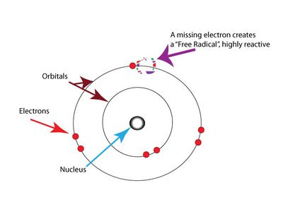 What Are Electrostatic Forces?