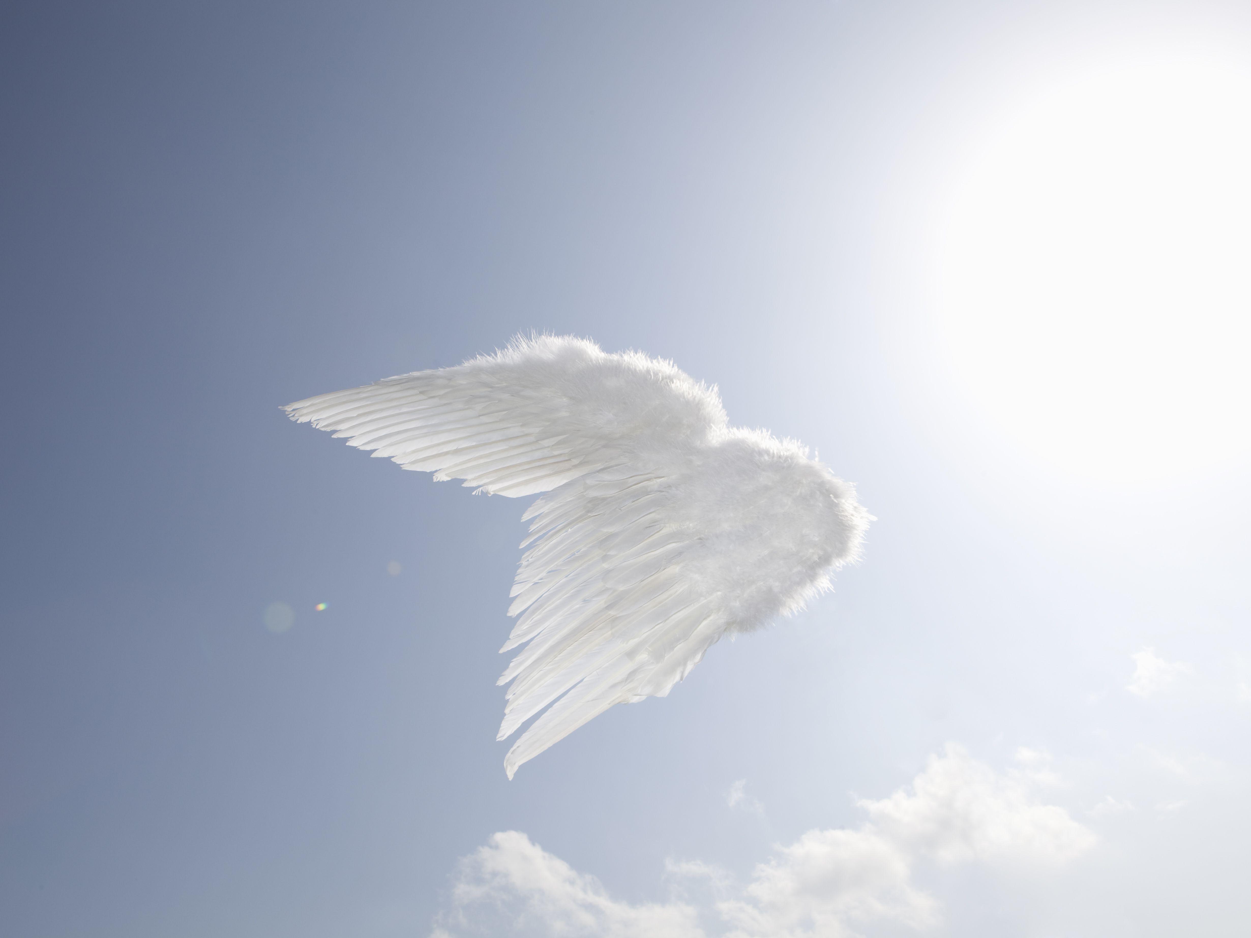 10 True Stories Of Angel Encounters
