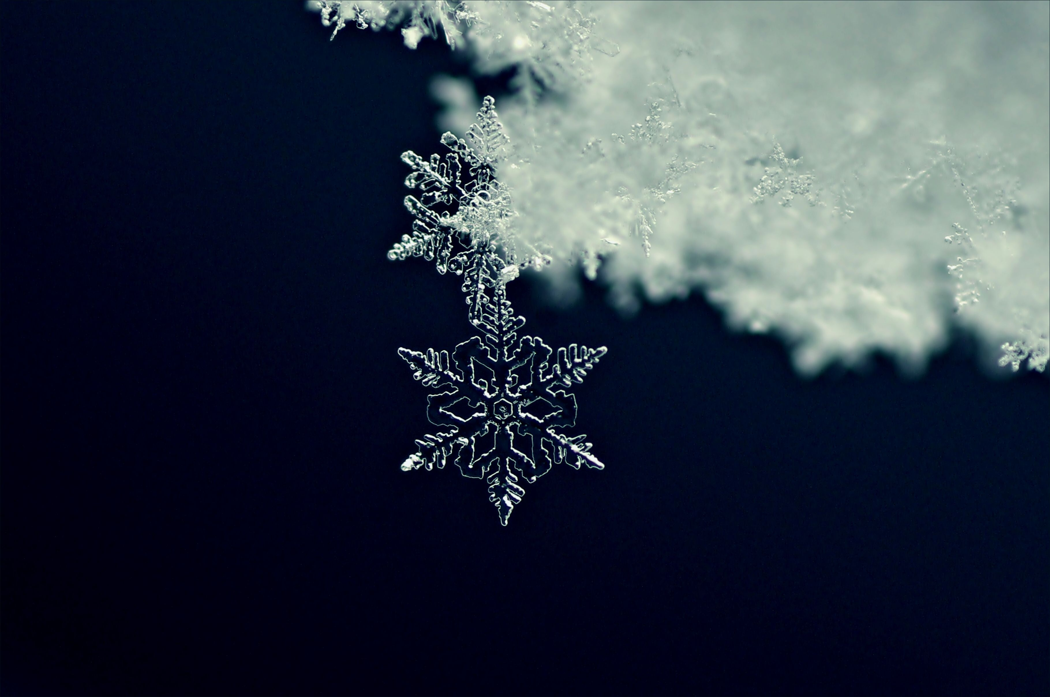 The Science Of Snowflake Formation Shape And Design