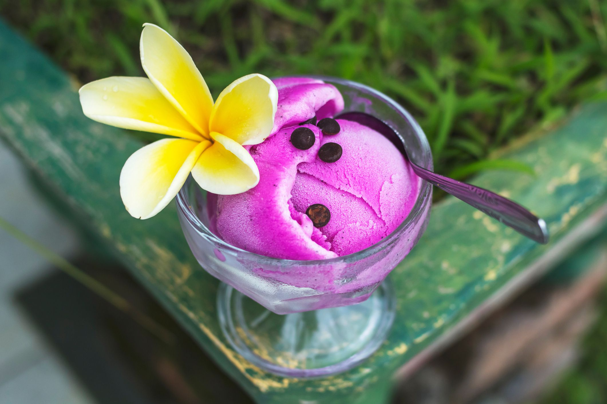 ideas for painting my living room small apartments dragon fruit frozen sorbet dessert recipe