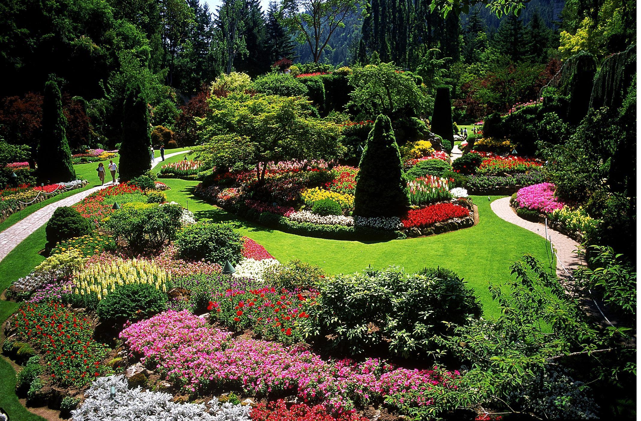 Landscape Layout Ideas