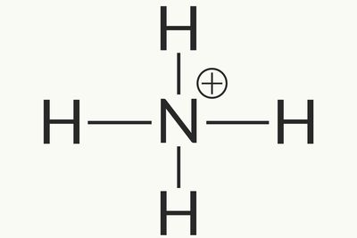 Polyatomic Ion Definition and Examples