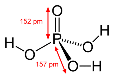 Common Acids and Bases You Should Know