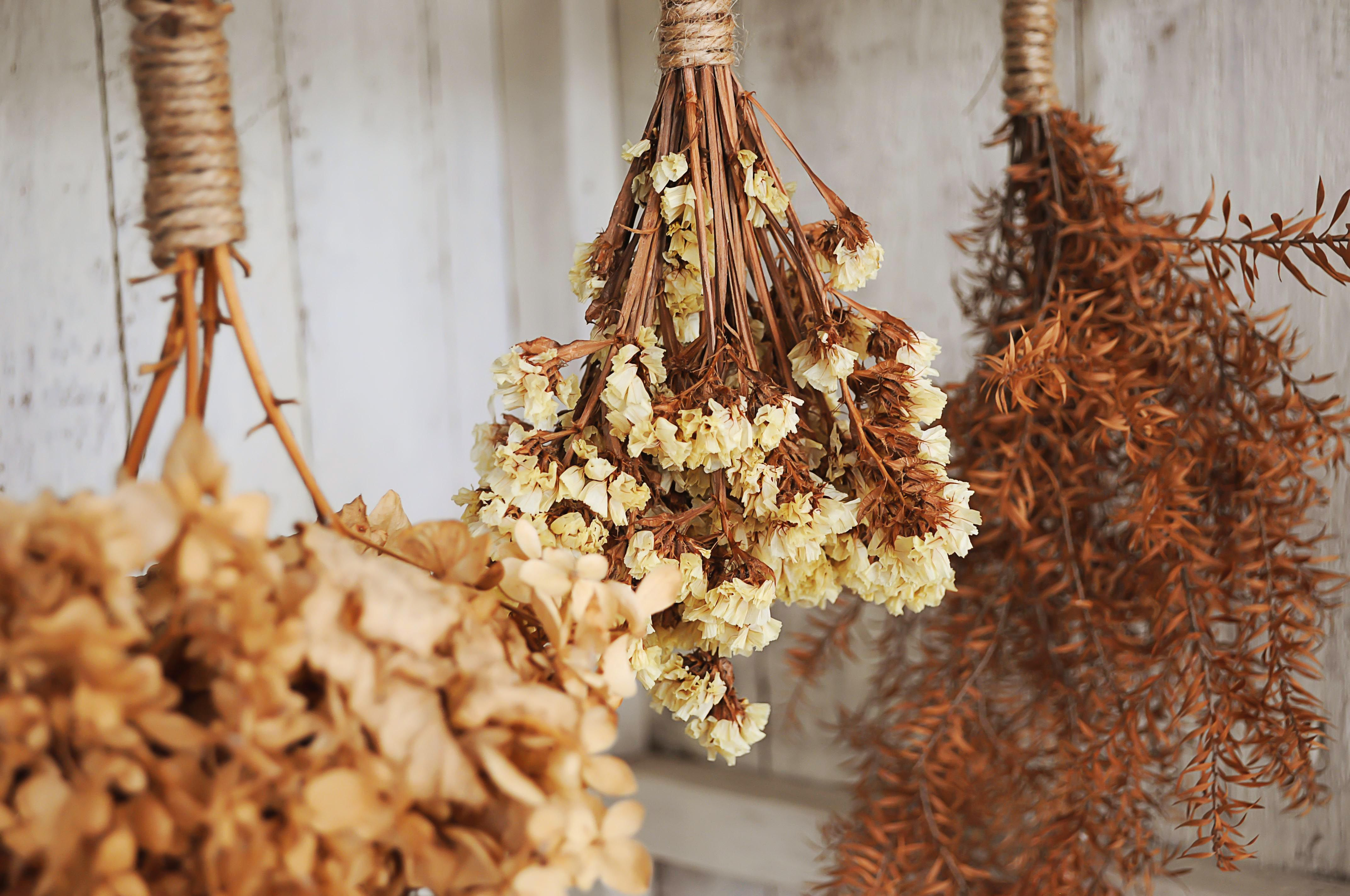 How to Dry Flowers with Laundry Borax