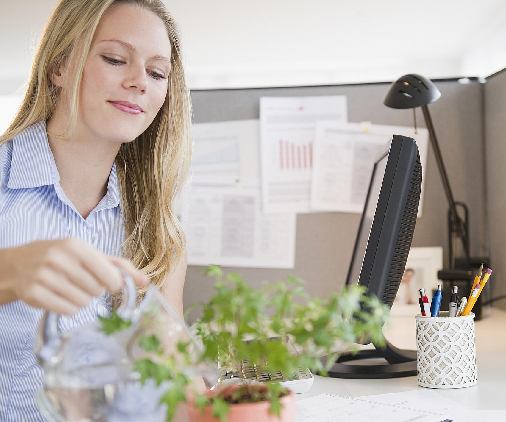 How Can I Create Good Feng Shui in My Office Cubicle