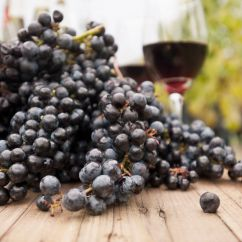 Grapes And Wine Kitchen Decor Pictures For Walls Grape Must Pudding Greek Recipe
