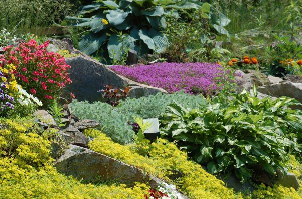 build rock gardens