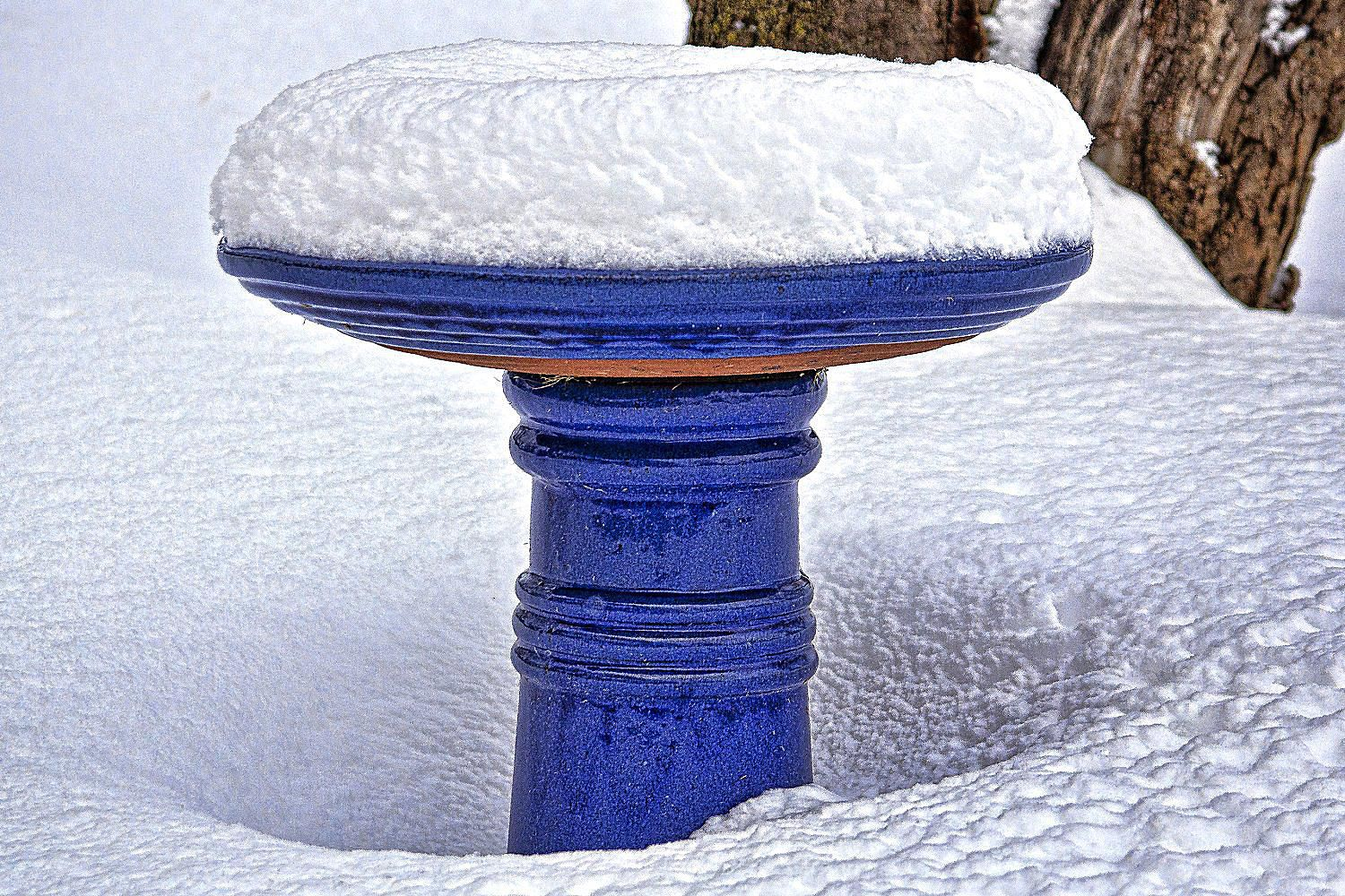 Winter Bird Baths  Is Your Water Ready for the Cold