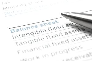 Assets, Liabilities, and Shareholder Equity Explained