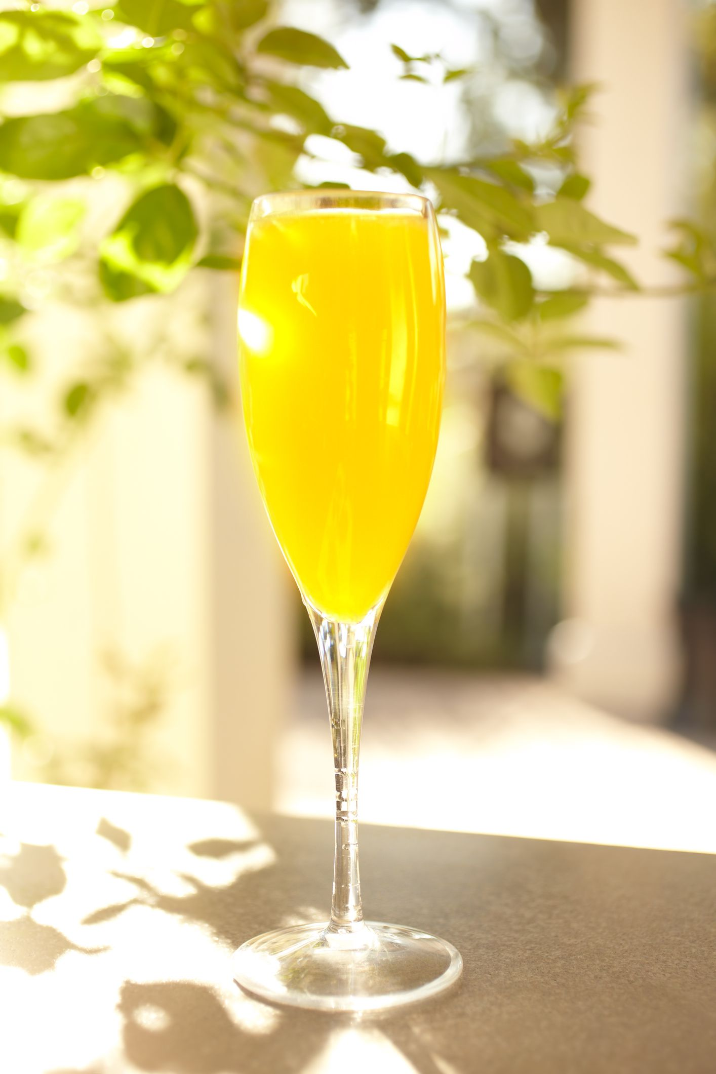 Bucks Fizz Orange Champagne Cocktail Recipe