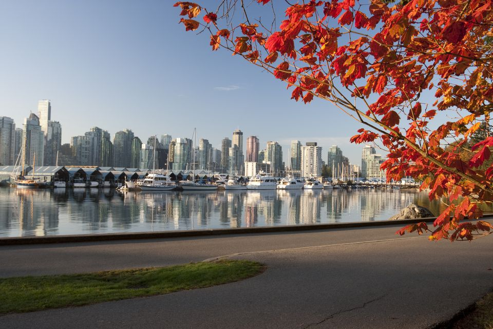 Central Park Fall Wallpaper Vancouver In October Weather And Event Guide