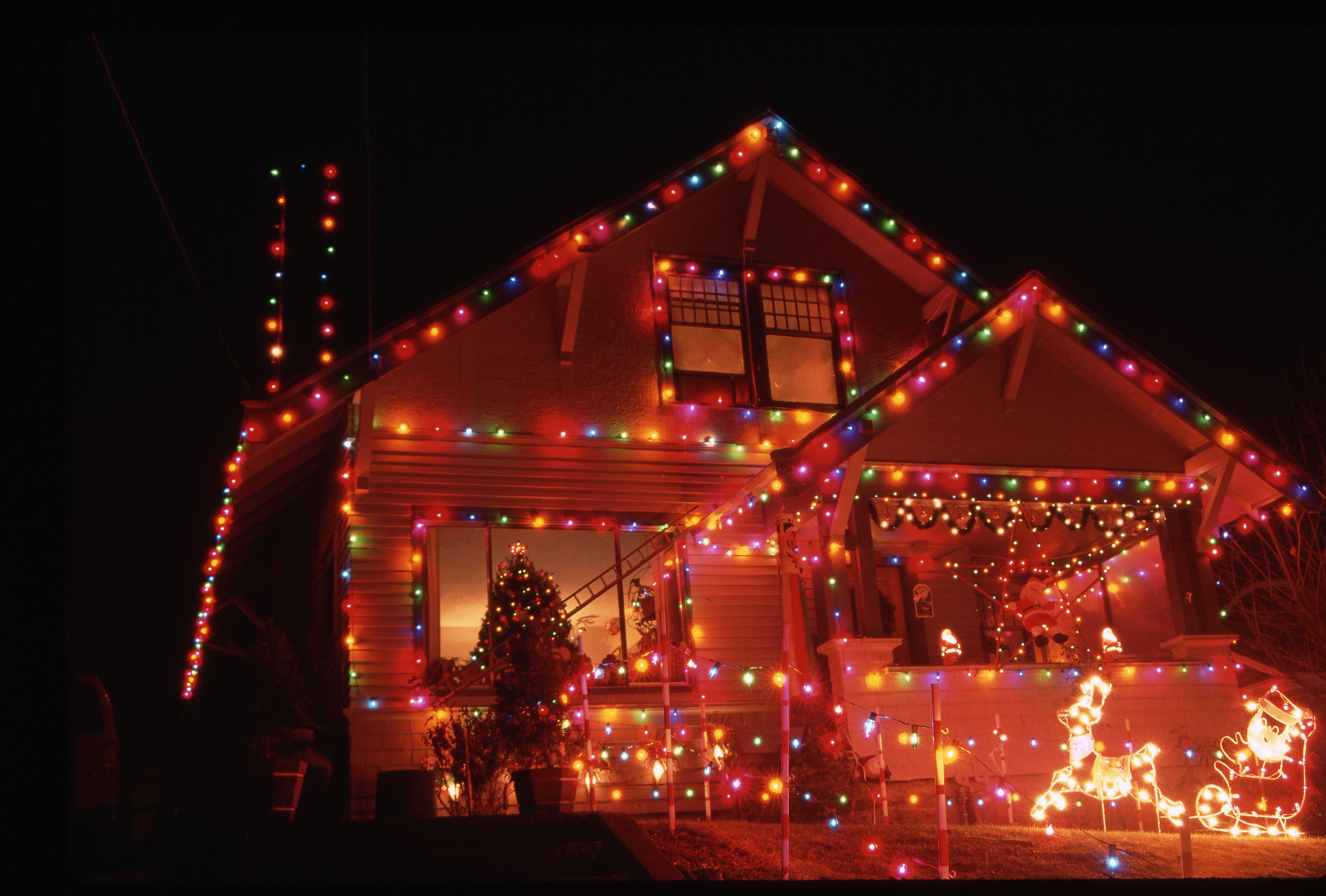 Hogle Zoo Christmas Lights