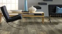 Shaw Luxury Vinyl Plank Floor - Reviews and Basics