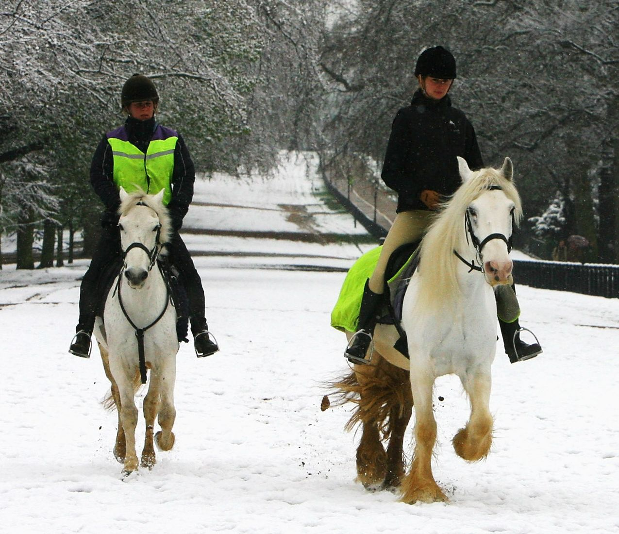 Tips For Horseback Riding Safely And Comfortably In Winter