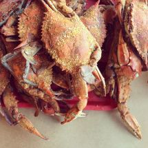 Chesapeake Bay Crab Seasoning