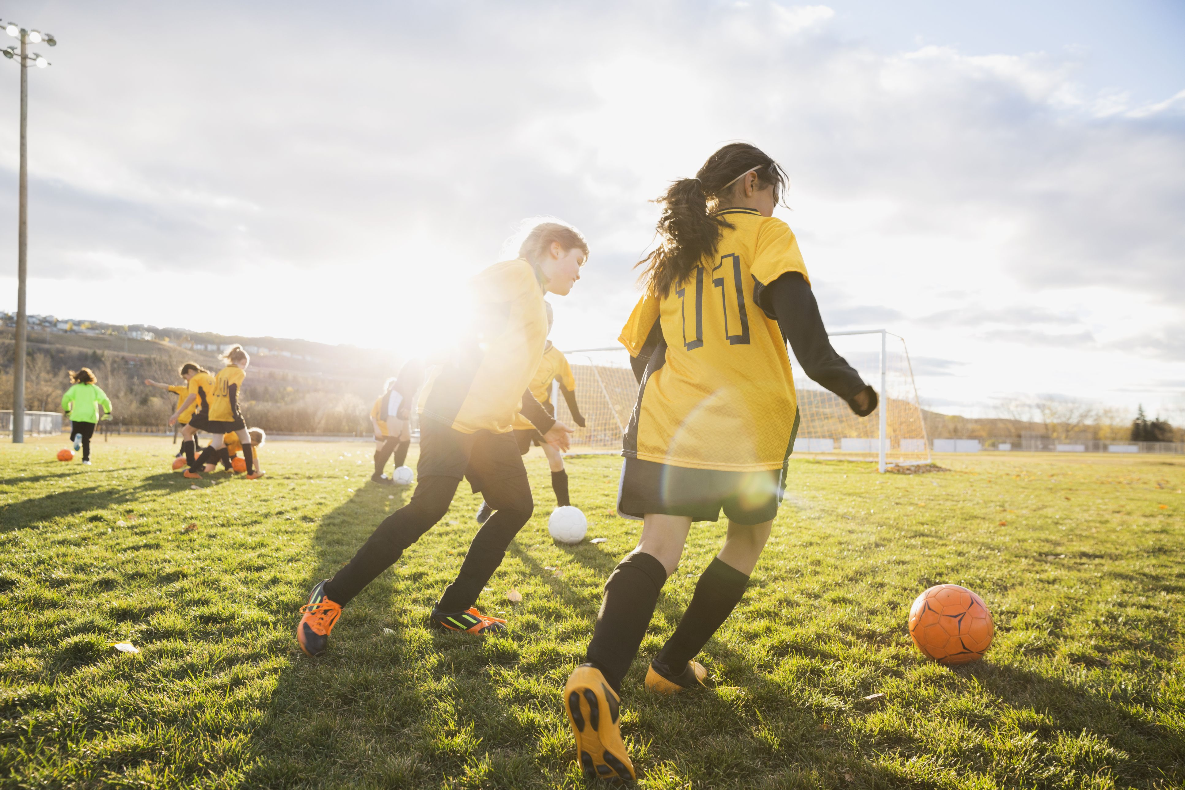 What Is Sports Psychology History Topics Careers