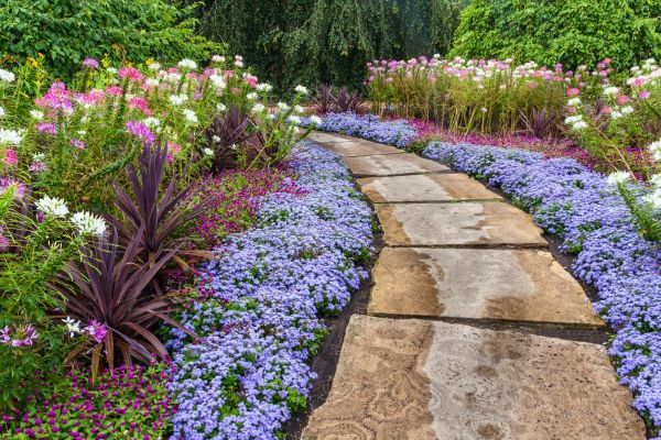 landscaping budget 5 easy