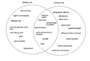 Using a Venn Diagram for a Compare and Contrast Essay