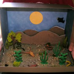 Deciduous Forest Food Web Diagram 1981 Yamaha 450 Wiring How To Make A Desert Diorama Craft