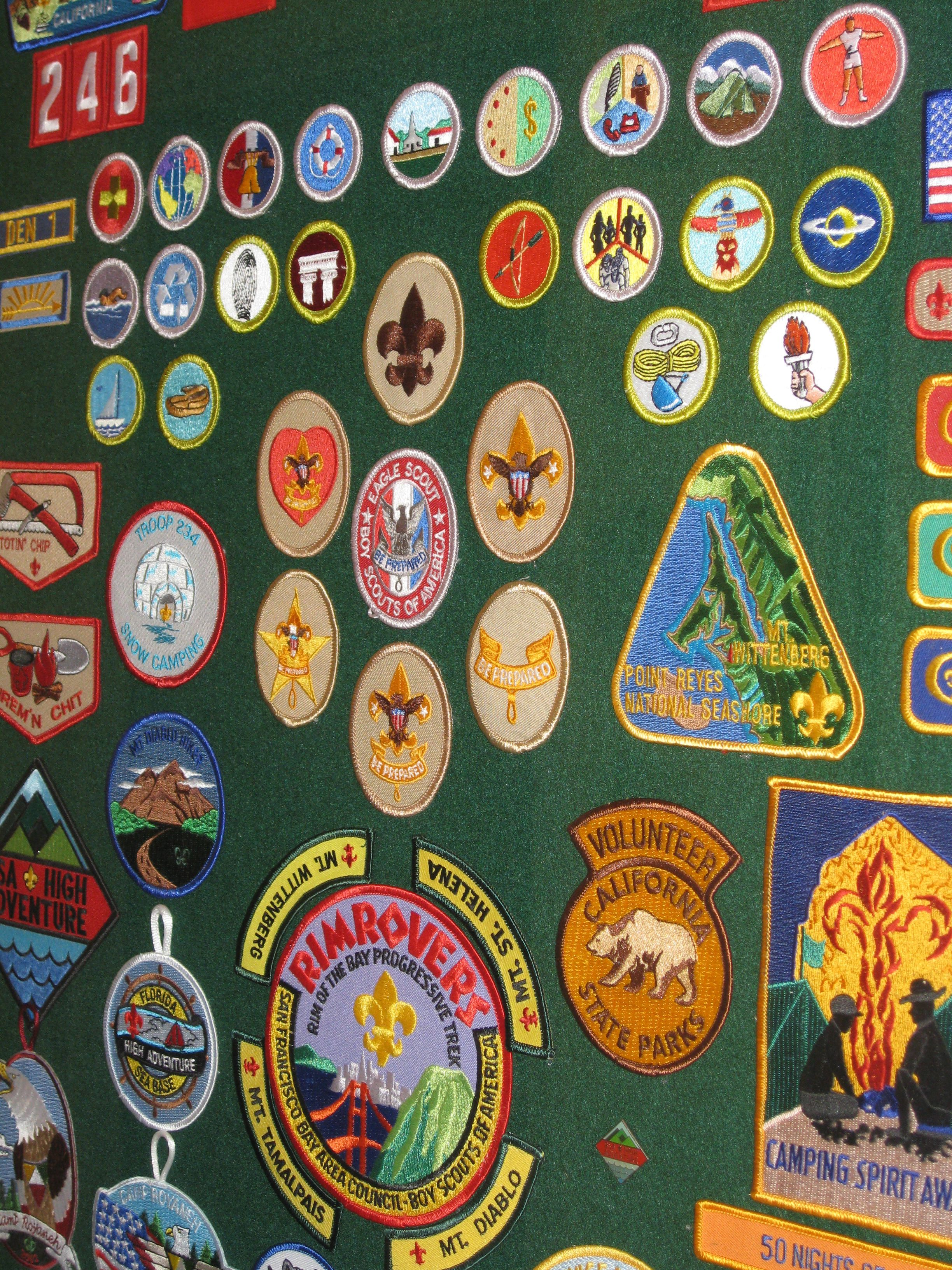 Tips To Make Boy Scout Merit Badges Easier