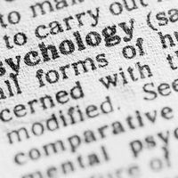 Which Psychology Career Is Right for You?