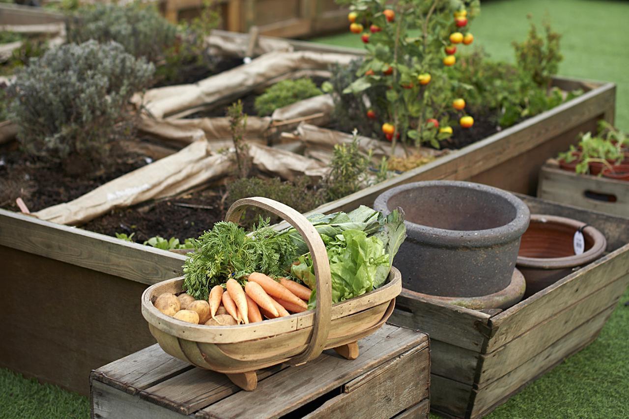 Diy Small Raised Garden