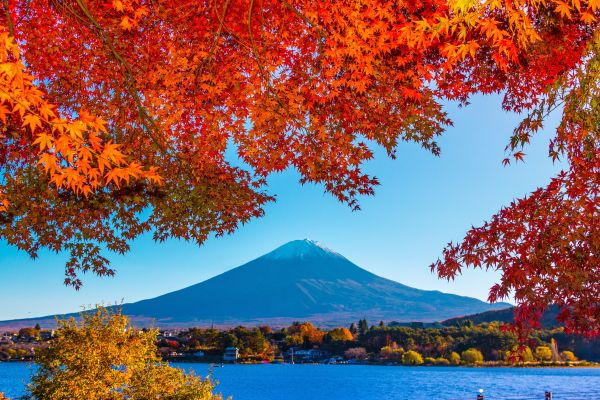 Where to Travel in Asia in October