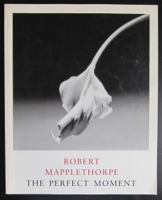 mapplethorpe-perfectr-a