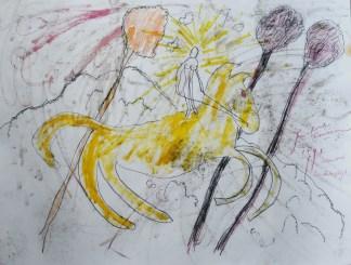 Franssens /Radiant rider