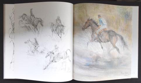 Klaasse paarden d
