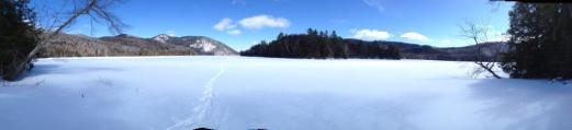 Leaddog Tracks in The Snow