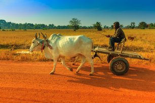 27_Cambodian_Transport