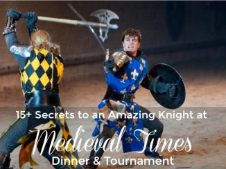 15+ Secrets to an Amazing Knight at Medieval Times Atlanta